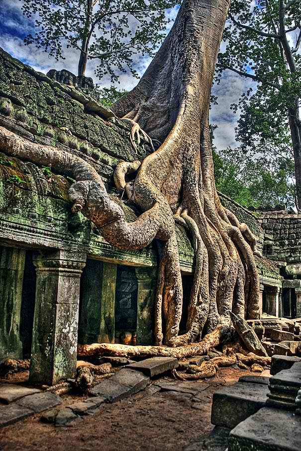 Angkor Wat, Cambodia, ΑΝΙΩΘΟΙ