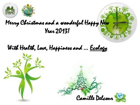 Wishes Card 2013