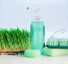 Cleaning supplies beside grass