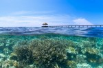 Jetty over coral reef, Velidhu Island, Maldives