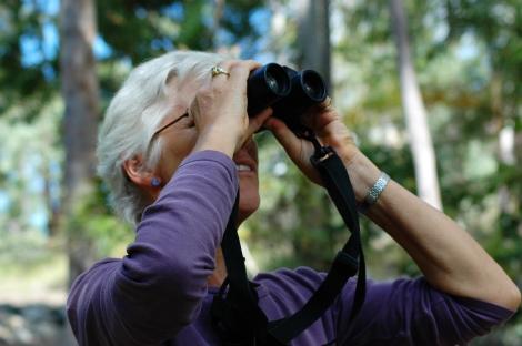 Bird watching - Photo Credit: Flickr